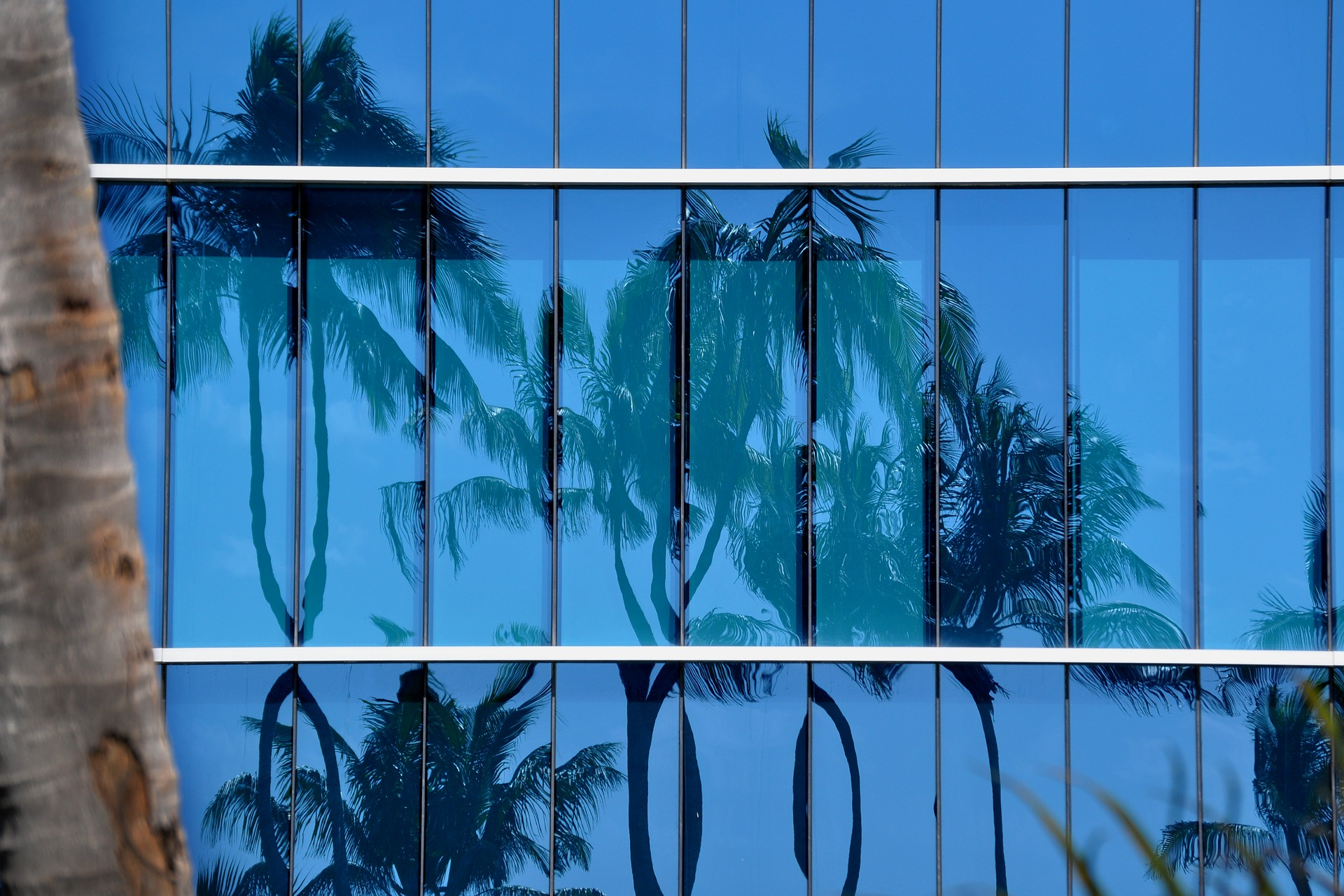 miami windows
